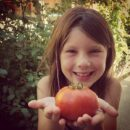 Chef Zov Offers Healthy Lunchbox Suggestions for Families